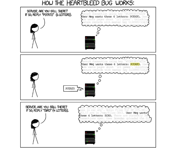 ../../../images/heartbleed_explanation1.png